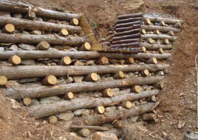 Ingegneria naturalistica e difesa del suolo